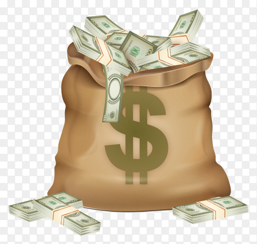 Money bag illustration premium vector PNG