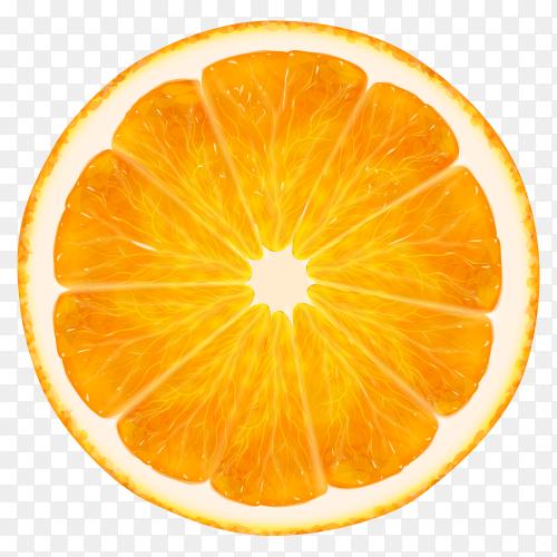 Orange fruit slice on transparent background PNG