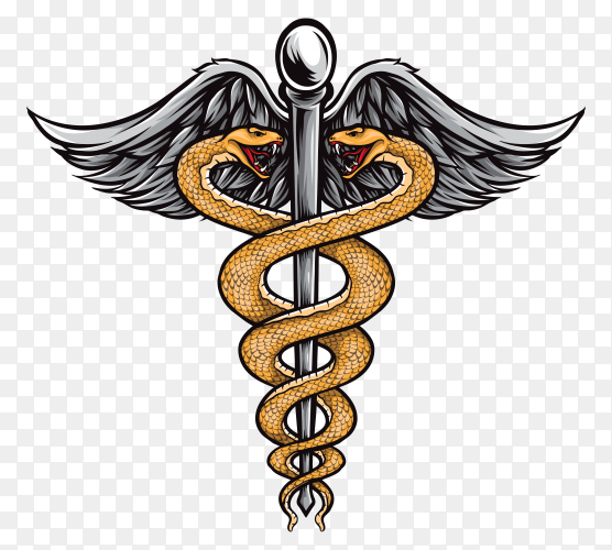 Pharmacy medical logo isolated on transparent background PNG