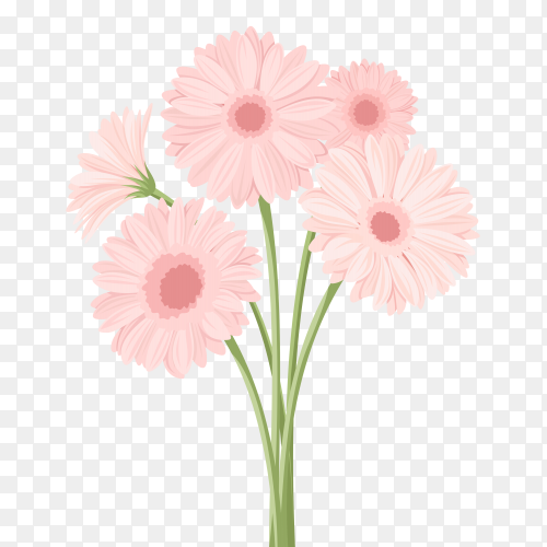 Pink flower illuatration premium vector PNG