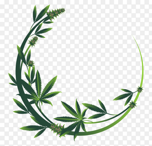 Abstract wreath with leaves on transparent PNG