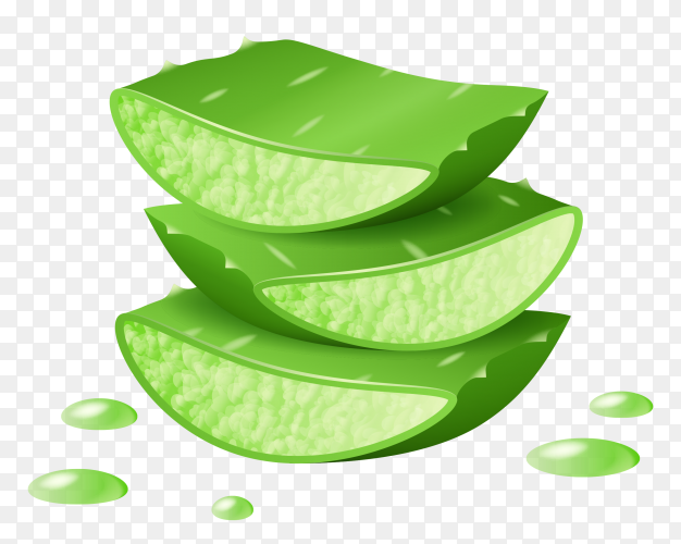 Aloe Vera cut pieces,cut pieces with aloe dripping juice on transparent background PNG