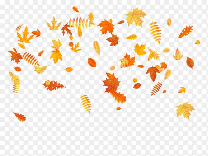 Autumn leaves falling illustration on transparent background PNG