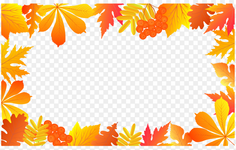 Autumn with falling leaves and rowan berries on transparent background PNG