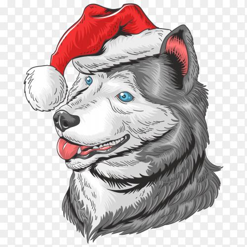 Christmas dog Santa Claus huskey on transparent background PNG