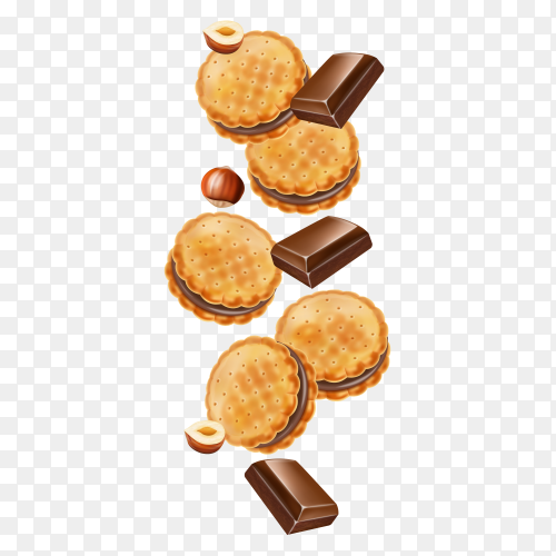 Cookie and pieces of chocolate on transparent background PNG