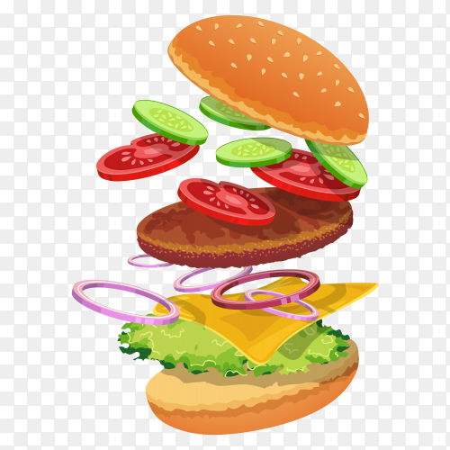 Hamburger ingredients on transparent background PNG