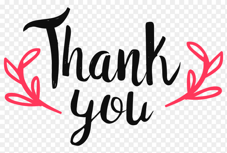 Hand drawn thank you premium vector PNG