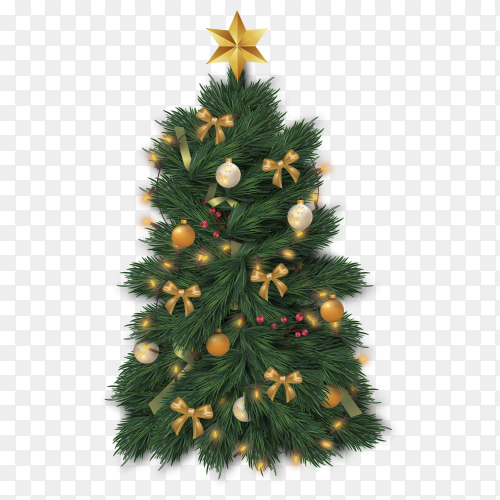 Modern realistic Christmas tree on transparent background PNG