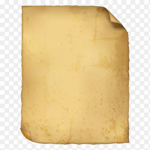 Parchment isolated premium vector PNG