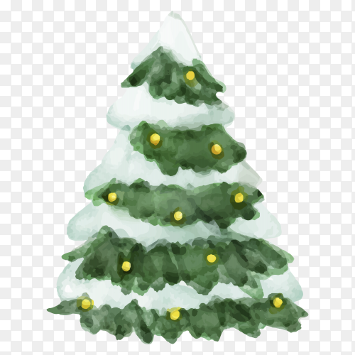 Watercolor Christmas tree illustration on transparent background PNG