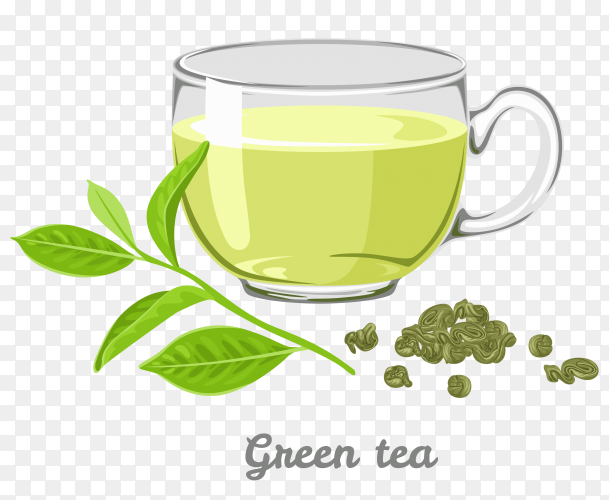 A cup of green tea on transparent background PNG