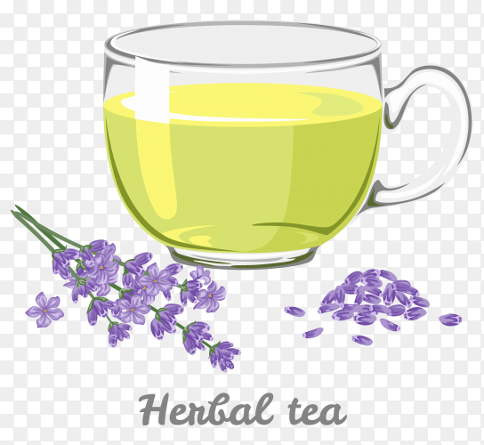 A cup of herbal tea on transparent background PNG