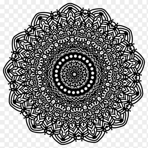 Beautiful floral mandala design on transparent PNG