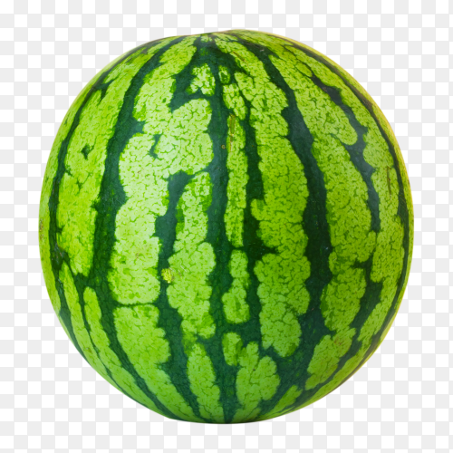 Big ripe watermelon isolated on transparent background PNG