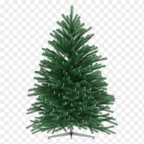 Christmas tree isolated premium vector PNG
