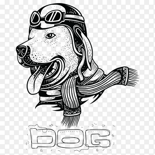 Hand drawn Dog wearing a helmet illustration on transparent background PNG