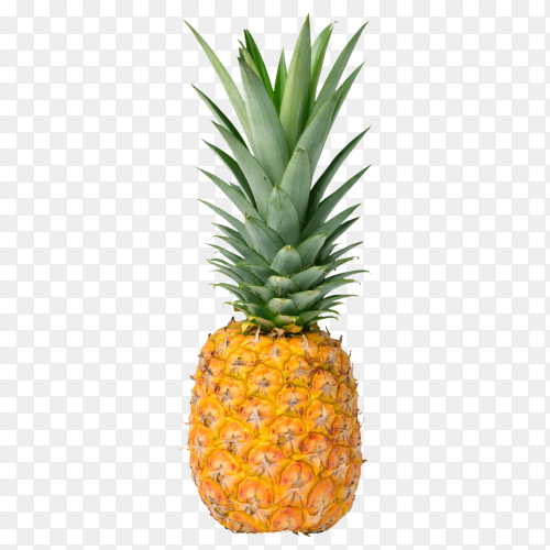 Pineapple fruit on transparent background PNG