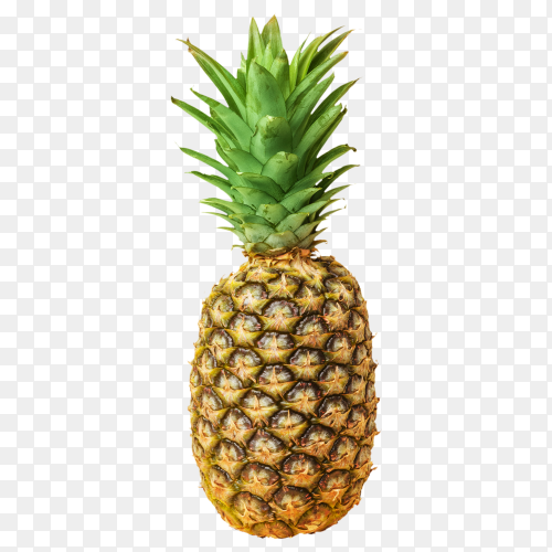 Pineapple isolated on transparent background PNG