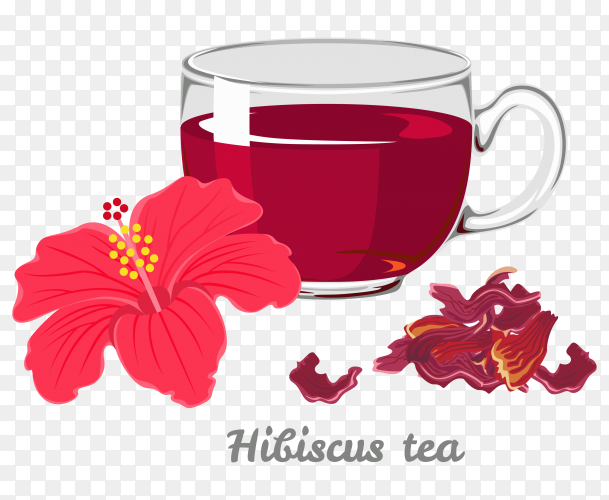Red hot hibiscus tea in a glass mug  on transparent background PNG