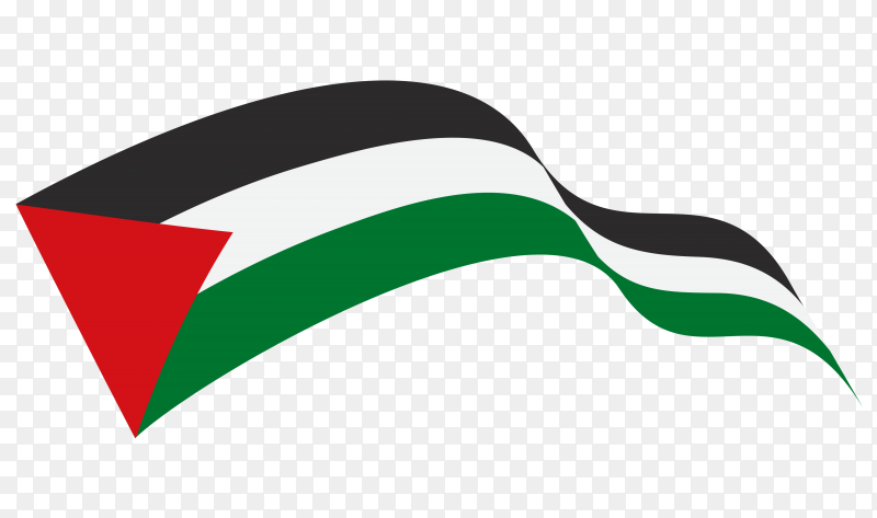 Waving flag of Palestine flag Clipart PNG