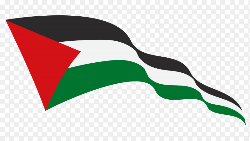 Waving flag Palestine on transparent background PNG