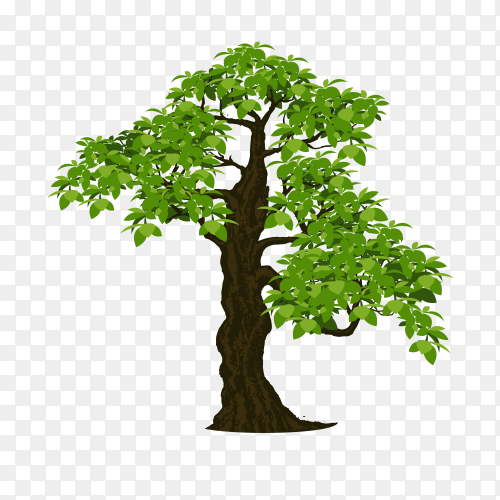 Tree design illustration on transparent PNG