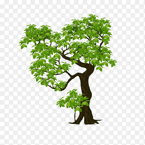 Tree design illustration premium vector PNG