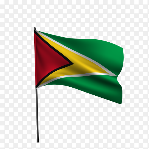 Guyana flag waving on a flagpole on transparent background PNG