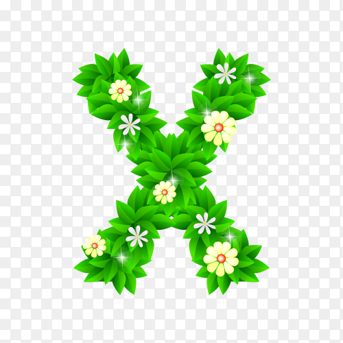 Letter X of the green and white flowers isolated on transparent background PNG