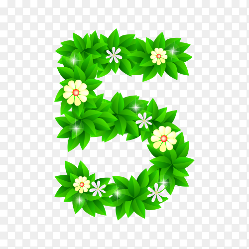 Number Five of the green and white flowers isolated on transparent background PNG