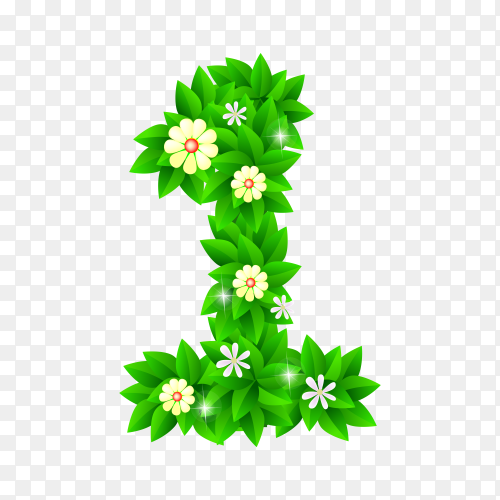 Number One of the green and white flowers isolated on transparent background PNG