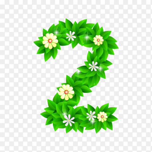 Number Two of the green and white flowers isolated on transparent background PNG
