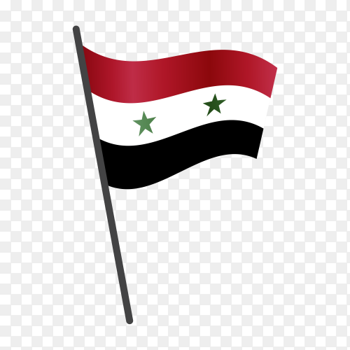 Syria flag illustration on transparent background PNG