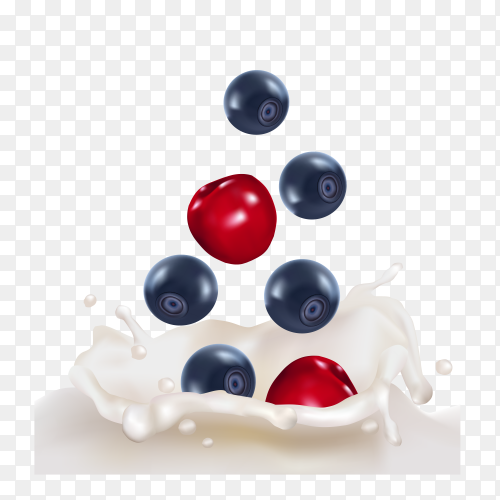 Black and Red cherry Dropping into milk splash on transparent background PNG