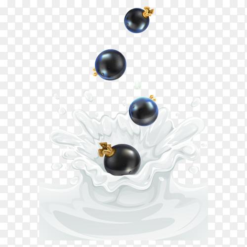 Black cherry Dropping into milk splash on transparent background PNG