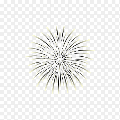 Colorful firework display on transparent background PNG