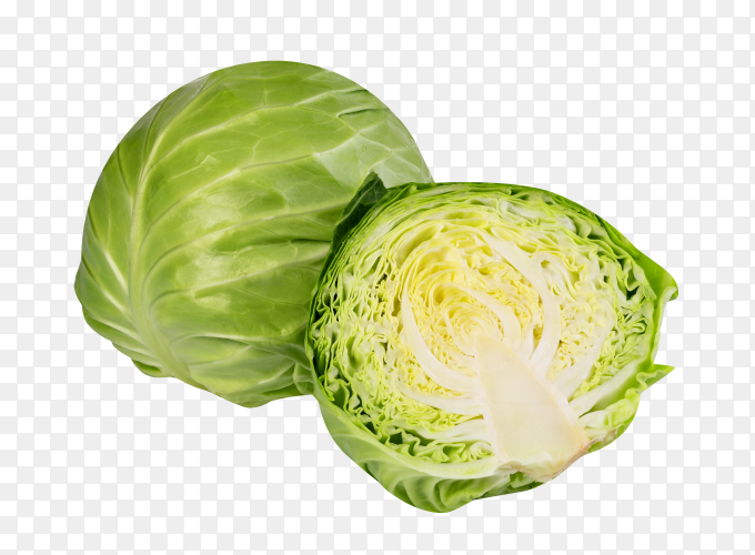 Cabbage isolated on transparent background PNG