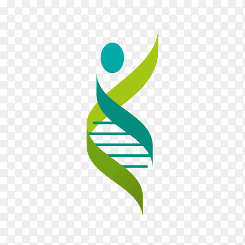 DNA, genetic symbol – people, man and woman icon on transparent background PNG