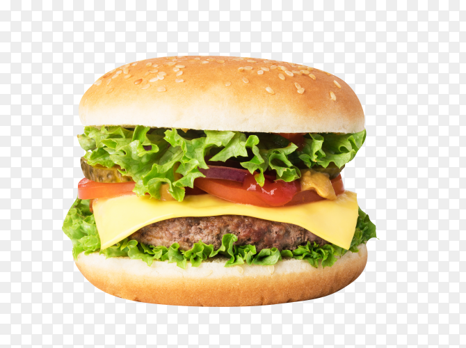 Delicious cheeseburger on transparent background PNG