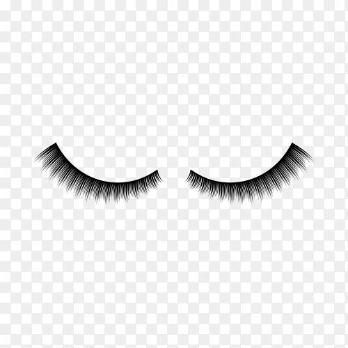 Eyelashes illustration on transparent background PNG