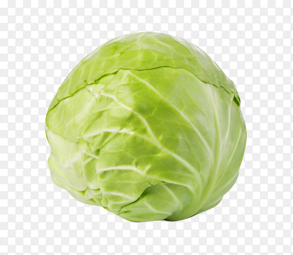 Green cabbage isolated on transparent background PNG