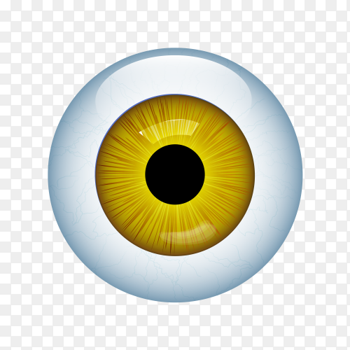 Human eye with veins isolated on transparent background PNG