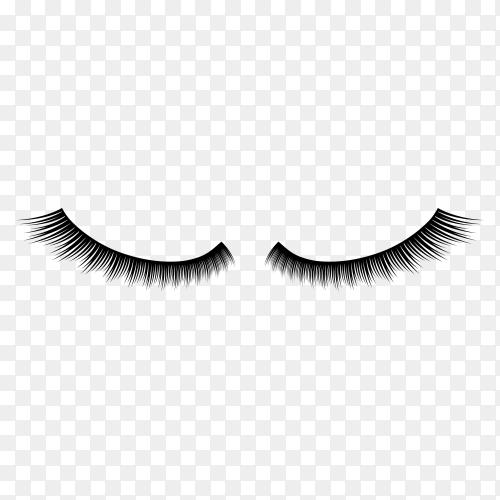 Illustration of Eyelashes on transparent background PNG