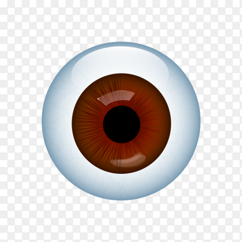 Illustration of Human eye with veins on transparent background PNG