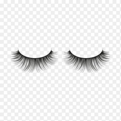 Realistic fake eyelashes on transparent background PNG