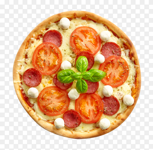 Tasty fresh pizza with ingredients tomatoes and basil on transparent background PNG