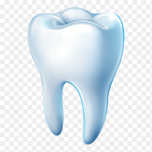 Tooth isolated on transparent background PNG.png