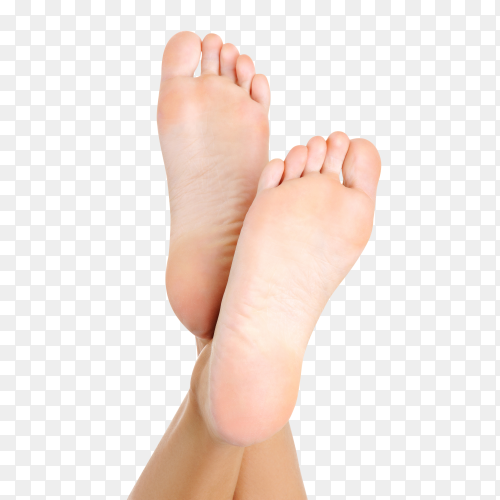 Close up shot of female feet isolated on transparent background PNG