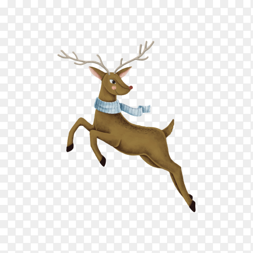 Cute Rudolph with scarf for Christmas on transparent background PNG